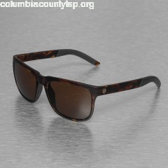 Sunglasses KNOXVILLE S in brown ccw4STCW