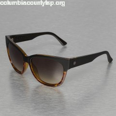 Women Sunglasses DANGER CAT in brown B52UIMRH