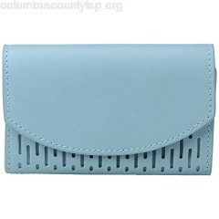 Skagen Flap Card Case nGuB7Y58