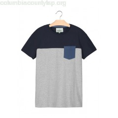New collection REGULAR-FIT ROUND-NECK COTTON T-SHIRT BLEU GRISE BIZZBEE MEN LTbPB4ds