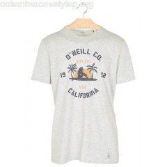 New collection SLIM-FIT ORGANIC JERSEY T-SHIRT WITH SCREEN PRINT POWDER WHITE O NEILL MEN RvzkQCRL