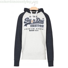 New collection SCREEN-PRINTED COTTON HOODIE STADIUM SILVER/BASS BLUE SUPERDRY MEN a0AN055v