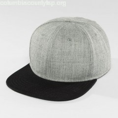 Snapback Cap Basic in grey Oe1L8NxR
