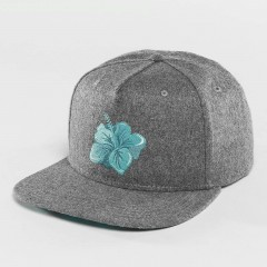 Snapback Cap Hawaiian in grey wwQMS2yE