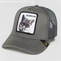 Trucker Cap Silver_Fox in grey fY3YKVhJ